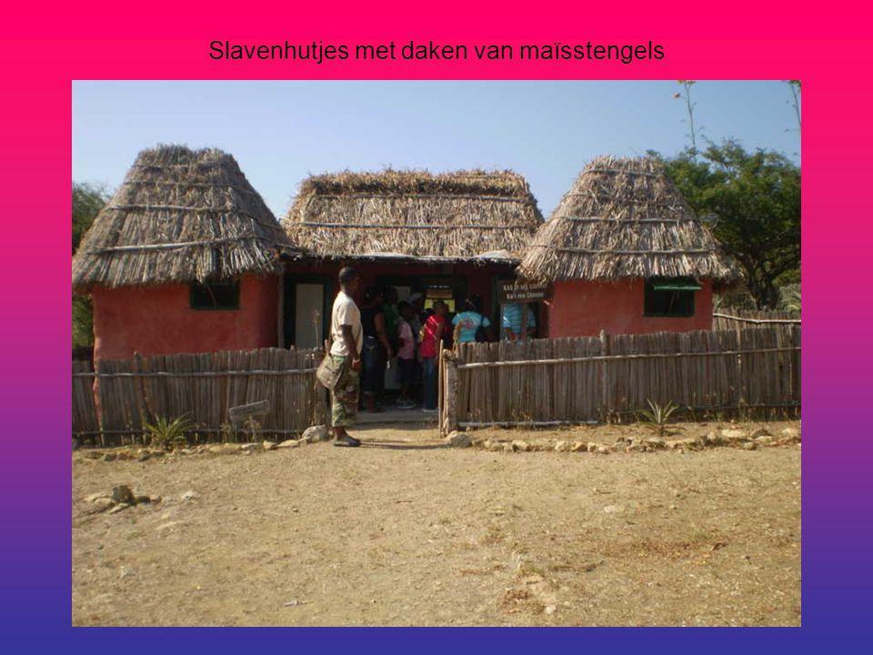 Slavenhutjes met daken van maïsstengels