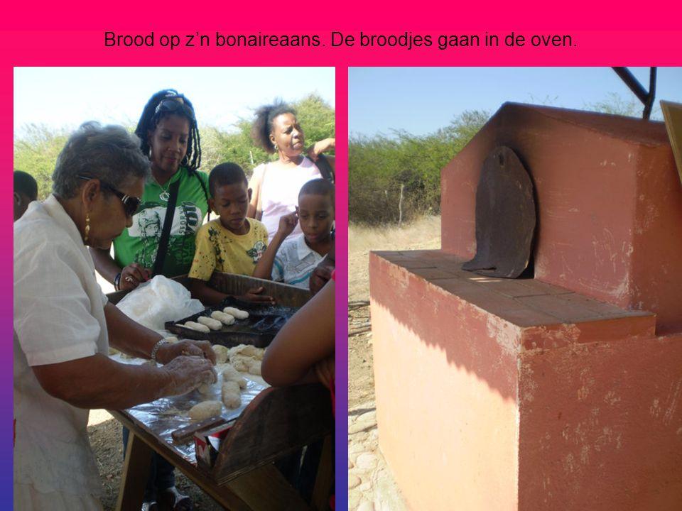 Brood op z'n bonaireaans. De broodjes gaan in de oven.