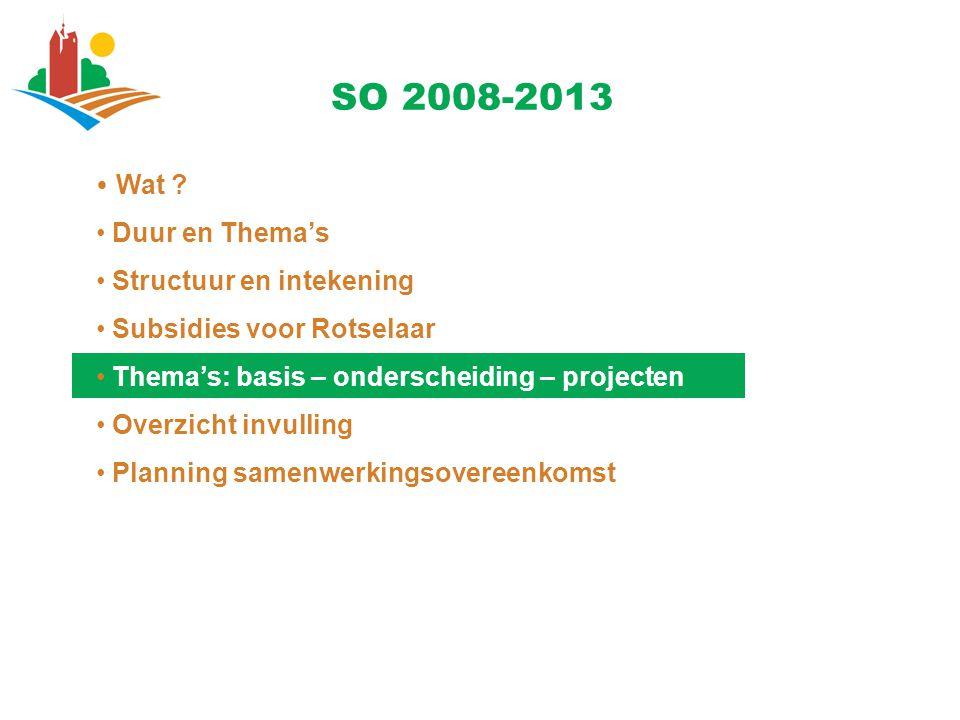 Wat ? Duur en Thema's Structuur en intekening Subsidies voor Rotselaar Thema's: basis – onderscheiding – projecten Overzicht invulling Planning samenw
