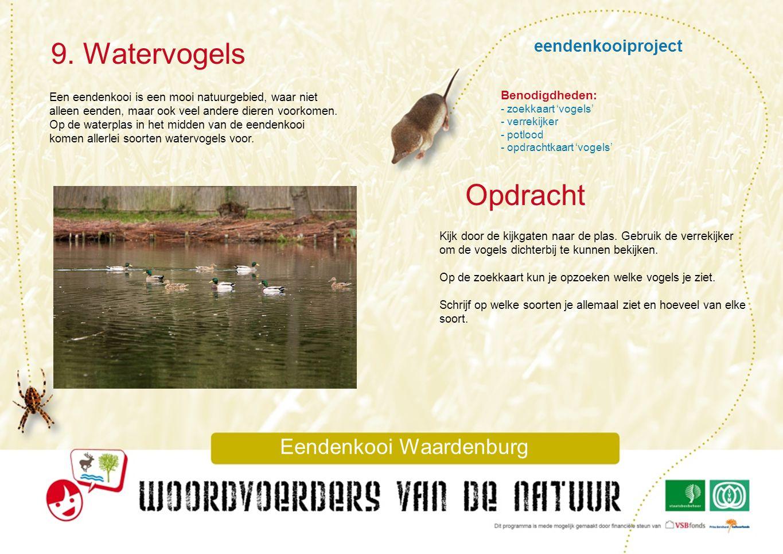 9. Watervogels Eendenkooi Waardenburg Opdracht Benodigdheden: - zoekkaart 'vogels' - verrekijker - potlood - opdrachtkaart 'vogels' Kijk door de kijkg