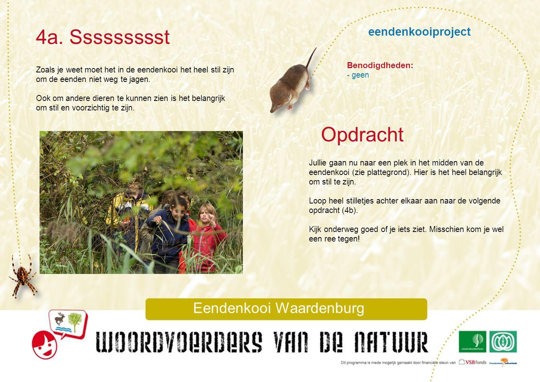 eendenkooiproject 4a. Ssssssssst Eendenkooi Waardenburg Zoals je weet moet het in de eendenkooi het heel stil zijn om de eenden niet weg te jagen. Ook