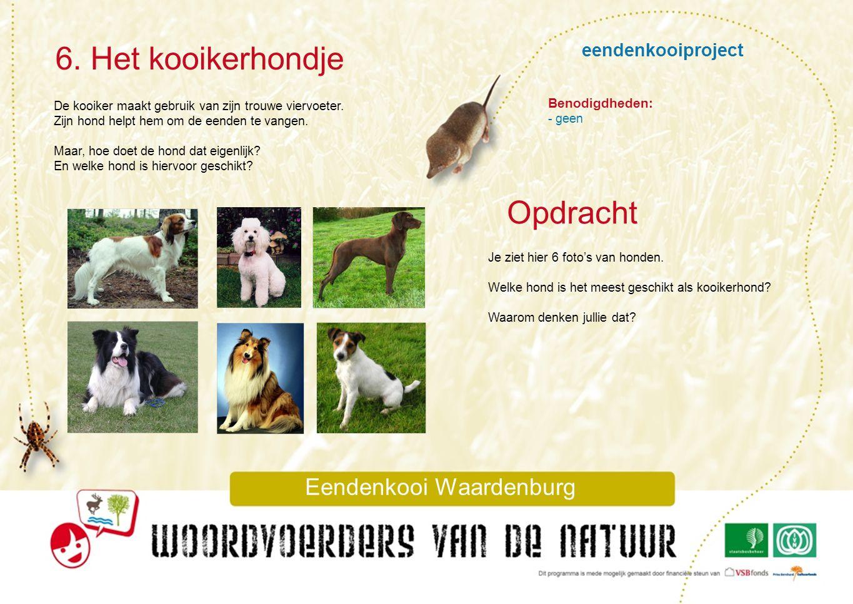 eendenkooiproject 6. Het kooikerhondje Eendenkooi Waardenburg Opdracht Benodigdheden: - geen Je ziet hier 6 foto's van honden. Welke hond is het meest