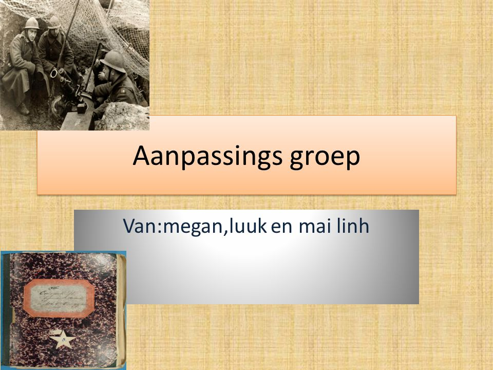 Aanpassings groep Van:megan,luuk en mai linh