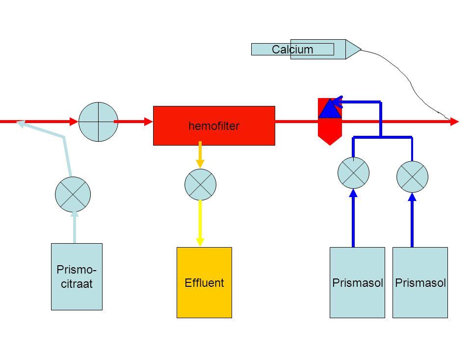 hemofilter Prismo- citraat EffluentPrismasol Calcium Prismasol