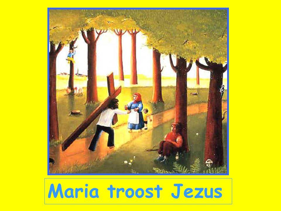 Maria troost Jezus