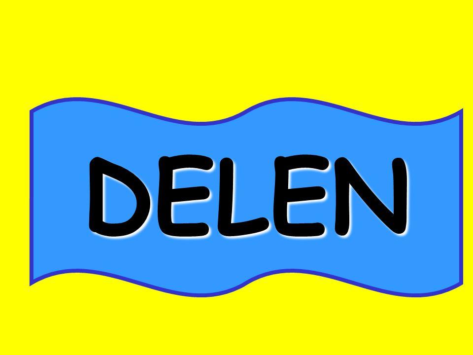 TALENT DELEN