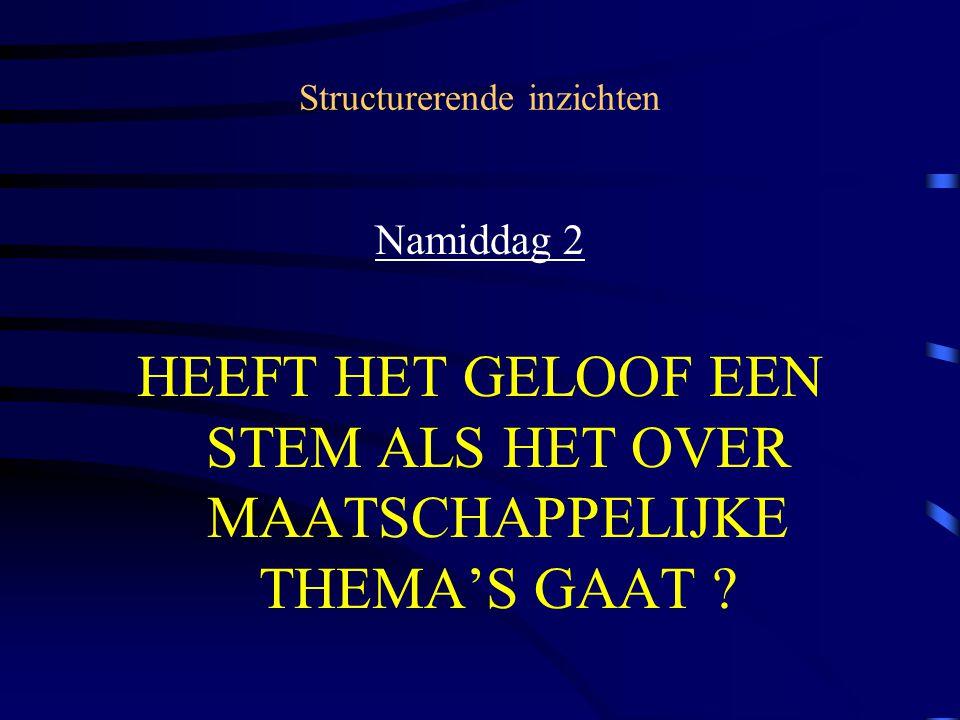 Structurerende inzichten Namiddag 2 HEEFT HET GELOOF EEN STEM ALS HET OVER MAATSCHAPPELIJKE THEMA'S GAAT