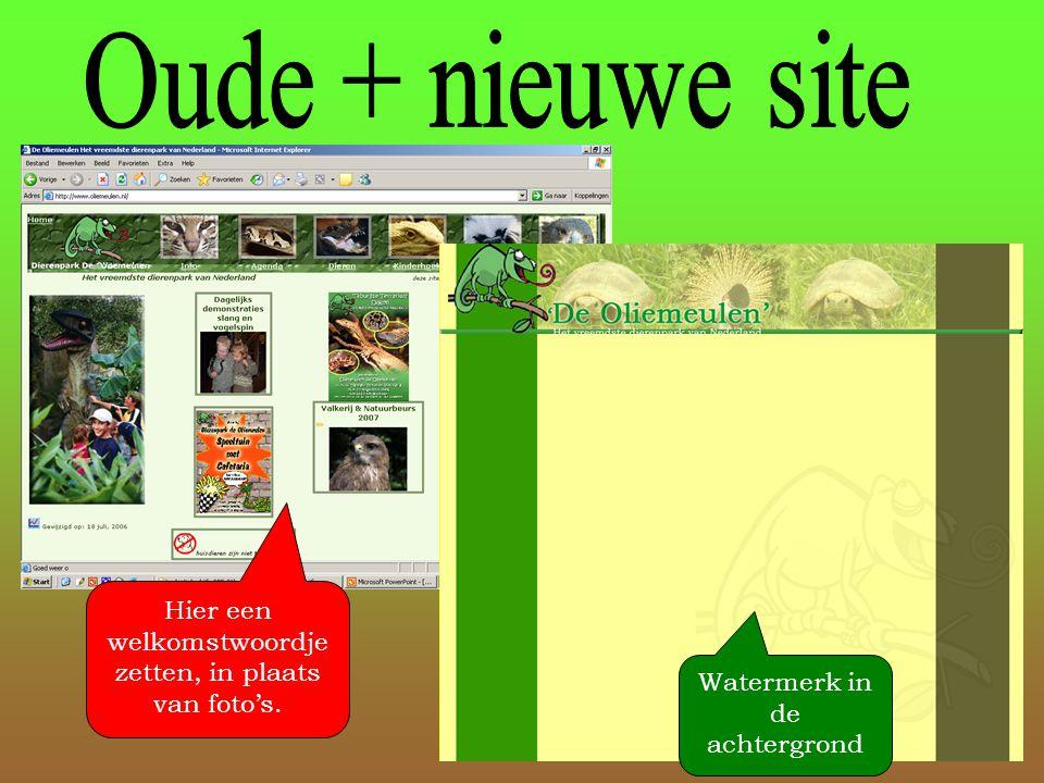 Watermerk in de achtergrond Hier een welkomstwoordje zetten, in plaats van foto's.