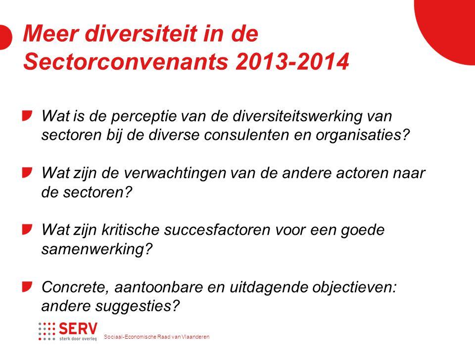 Sociaal-Economische Raad van Vlaanderen Meer diversiteit in de Sectorconvenants 2013-2014 Wat is de perceptie van de diversiteitswerking van sectoren bij de diverse consulenten en organisaties.