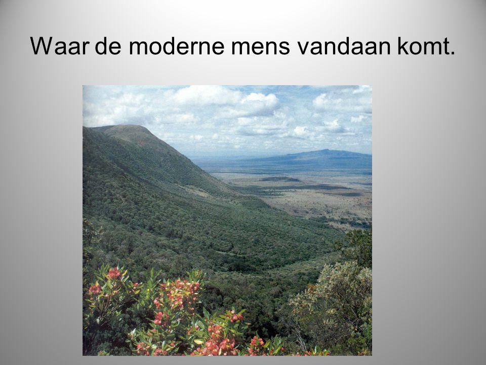 Waar de moderne mens vandaan komt.