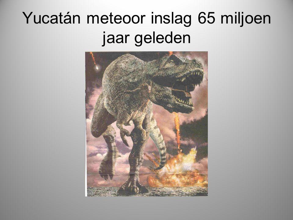 Yucatán meteoor inslag 65 miljoen jaar geleden