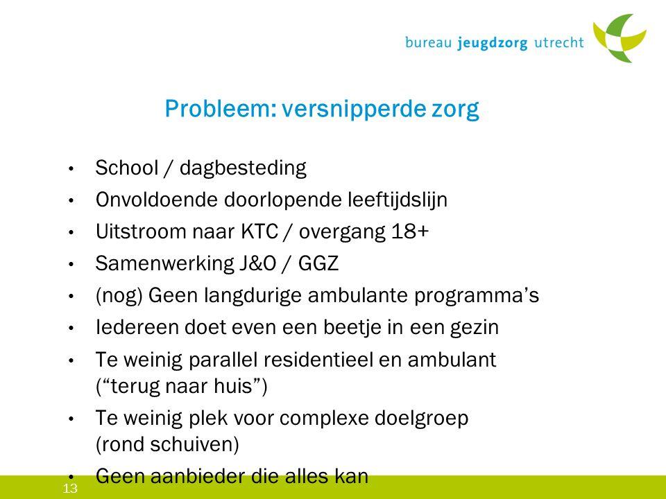 13 Probleem: versnipperde zorg School / dagbesteding Onvoldoende doorlopende leeftijdslijn Uitstroom naar KTC / overgang 18+ Samenwerking J&O / GGZ (n
