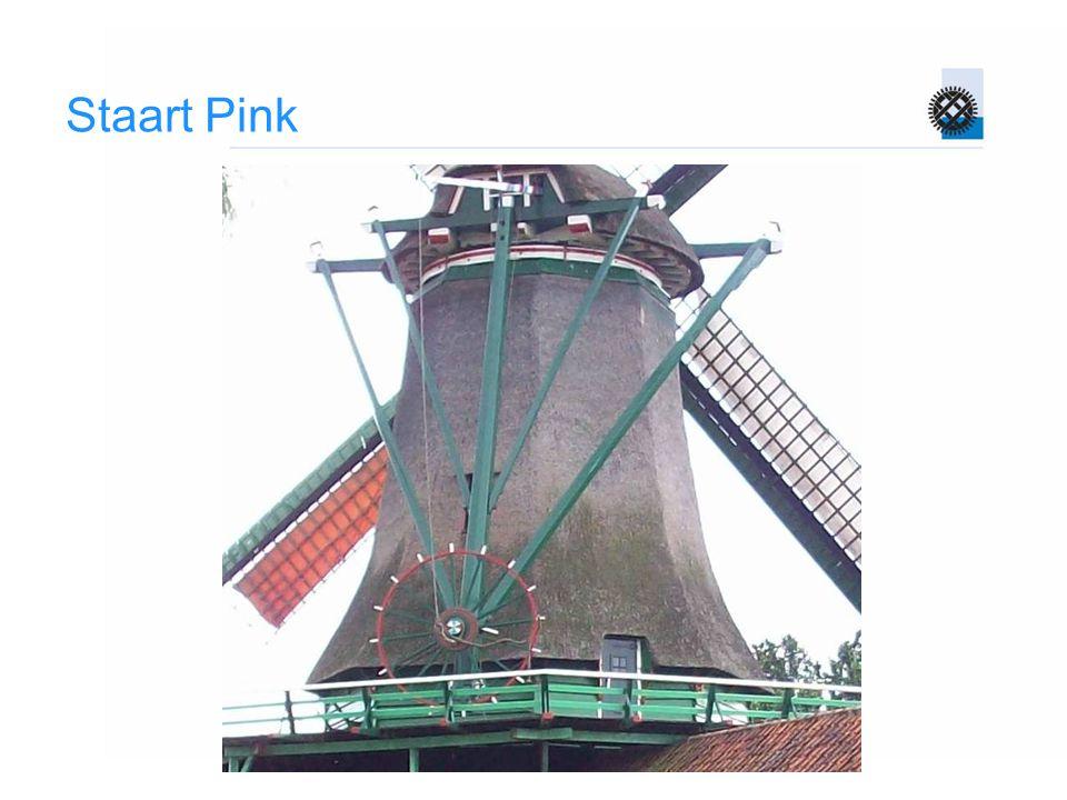 Staart Pink