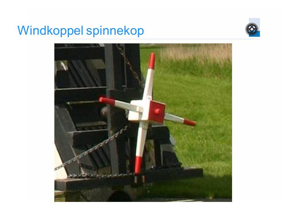 Windkoppel spinnekop