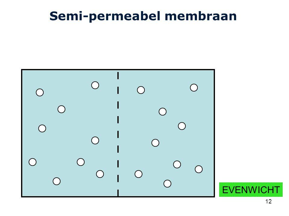 Cardiovascular Research Institute Maastricht (CARIM) 12 Semi-permeabel membraan EVENWICHT