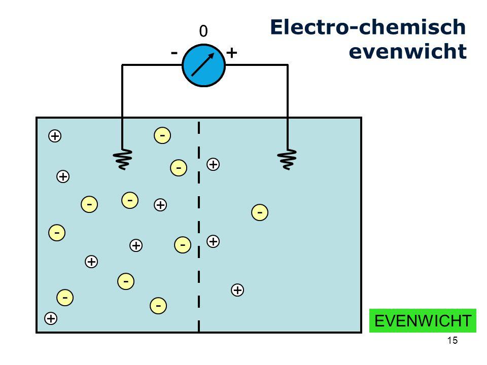 Cardiovascular Research Institute Maastricht (CARIM) 15 + BEGIN - - - - - - + + + + + + + + - - - + - 0 + - - - - - - + + + + + + + + - - - EVENWICHT + - 0 - Electro-chemisch evenwicht