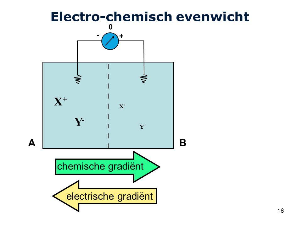 Cardiovascular Research Institute Maastricht (CARIM) 16 Electro-chemisch evenwicht AB + - 0 X+X+ Y-Y- X+X+ Y-Y- chemische gradiënt electrische gradiënt