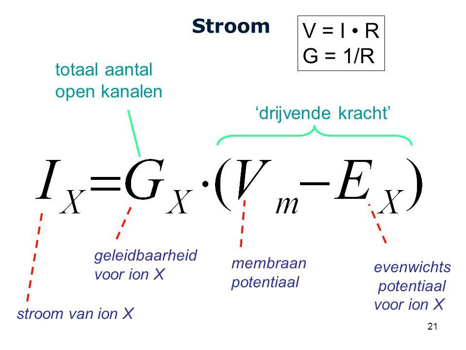 Cardiovascular Research Institute Maastricht (CARIM) 21 Stroom stroom van ion X evenwichts potentiaal voor ion X membraan potentiaal geleidbaarheid voor ion X 'drijvende kracht' totaal aantal open kanalen V = I R G = 1/R