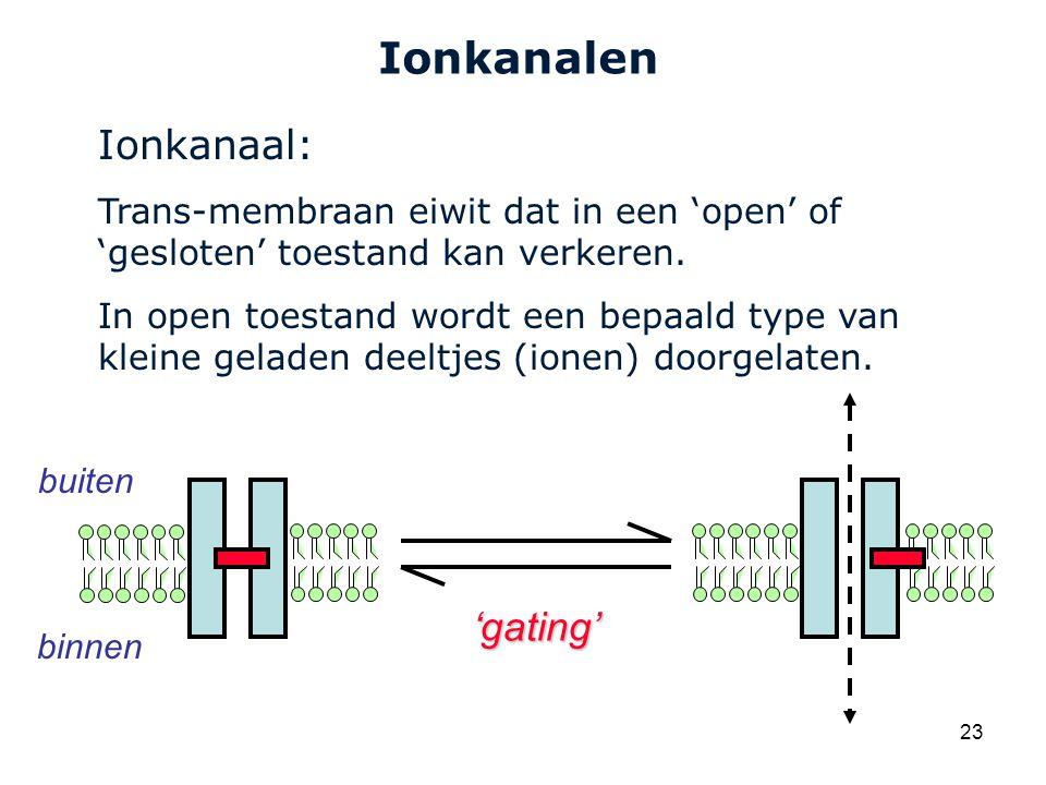 Cardiovascular Research Institute Maastricht (CARIM) 23 Ionkanalen Ionkanaal: Trans-membraan eiwit dat in een 'open' of 'gesloten' toestand kan verkeren.