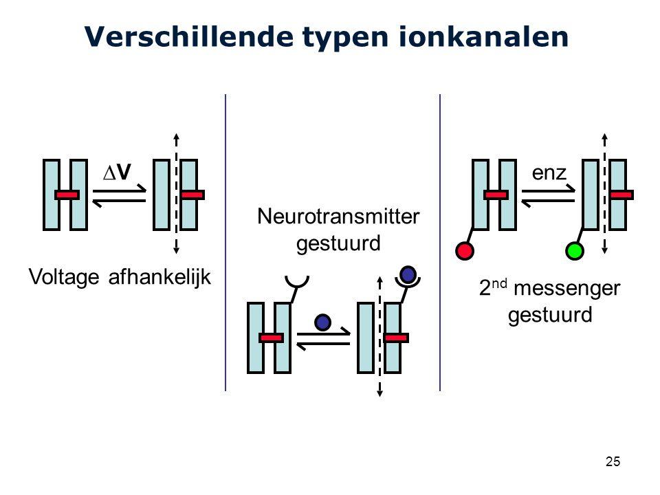 Cardiovascular Research Institute Maastricht (CARIM) 25 Verschillende typen ionkanalen ∆V Voltage afhankelijk 2 nd messenger gestuurd Neurotransmitter gestuurd enz