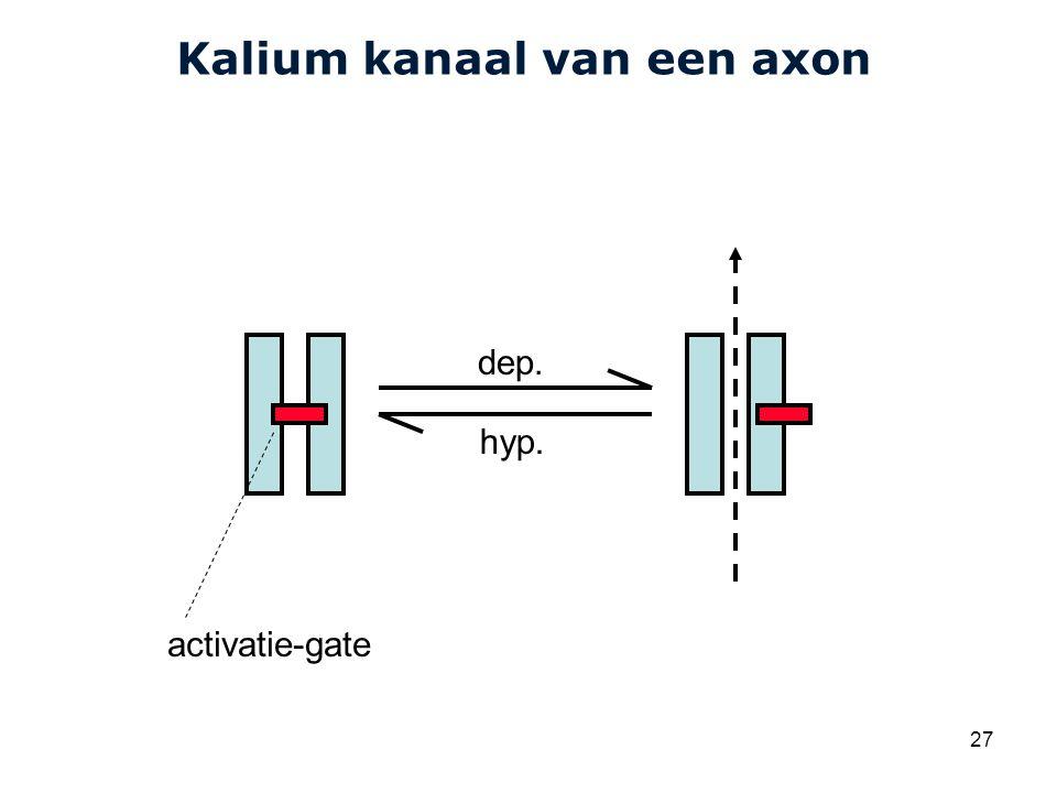 Cardiovascular Research Institute Maastricht (CARIM) 27 Kalium kanaal van een axon dep.