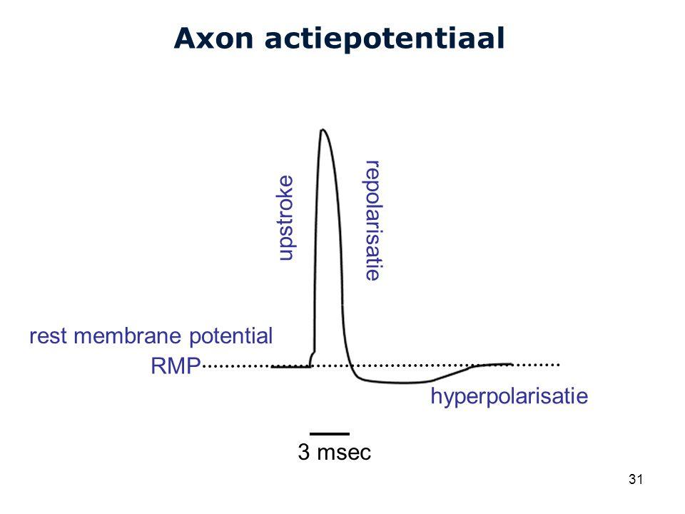 Cardiovascular Research Institute Maastricht (CARIM) 31 Axon actiepotentiaal upstroke hyperpolarisatie repolarisatie RMP 3 msec rest membrane potential