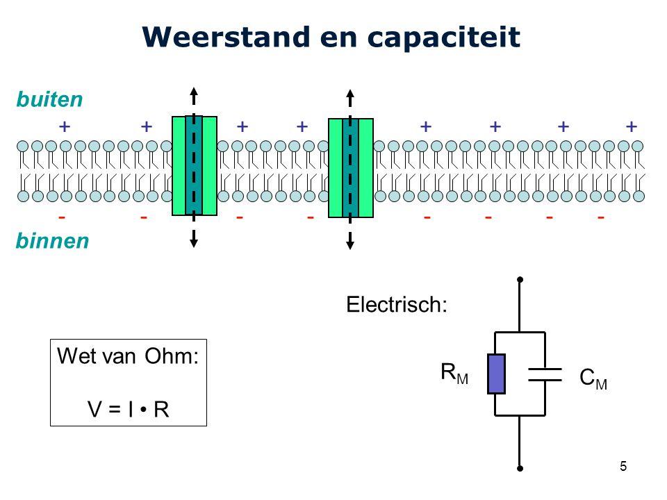 Cardiovascular Research Institute Maastricht (CARIM) 5 Weerstand en capaciteit buiten binnen Electrisch: CMCM ++++++++ -------- RMRM Wet van Ohm: V = I R