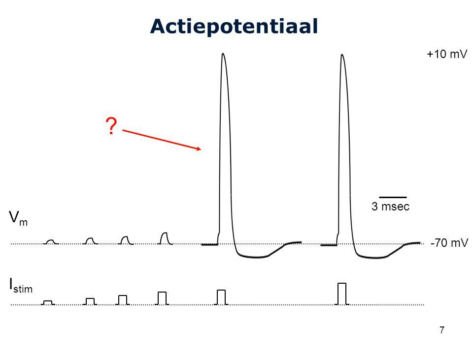 Cardiovascular Research Institute Maastricht (CARIM) 7 Actiepotentiaal VmVm 3 msec I stim +10 mV -70 mV ?