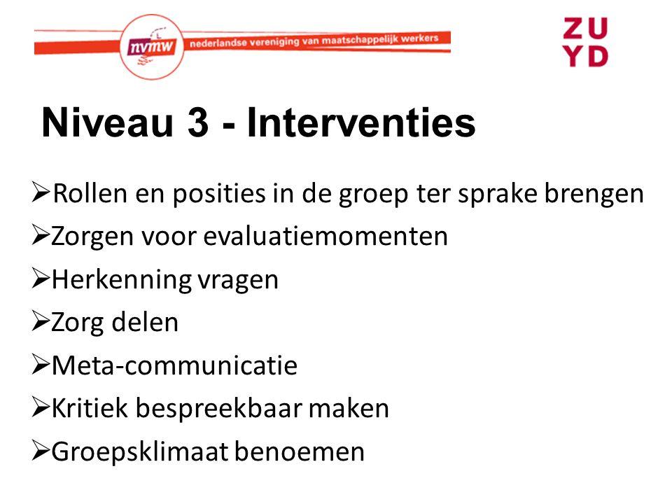 Niveau 3 - Interventies  Rollen en posities in de groep ter sprake brengen  Zorgen voor evaluatiemomenten  Herkenning vragen  Zorg delen  Meta-communicatie  Kritiek bespreekbaar maken  Groepsklimaat benoemen
