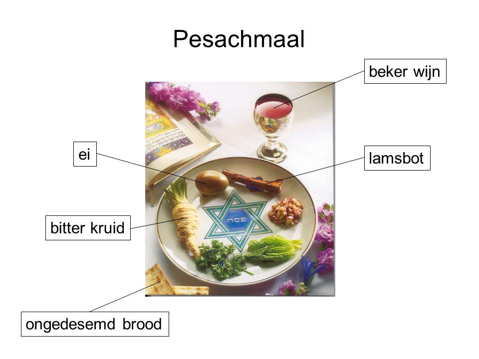 Pesachmaal lamsbot beker wijn ei ongedesemd brood bitter kruid