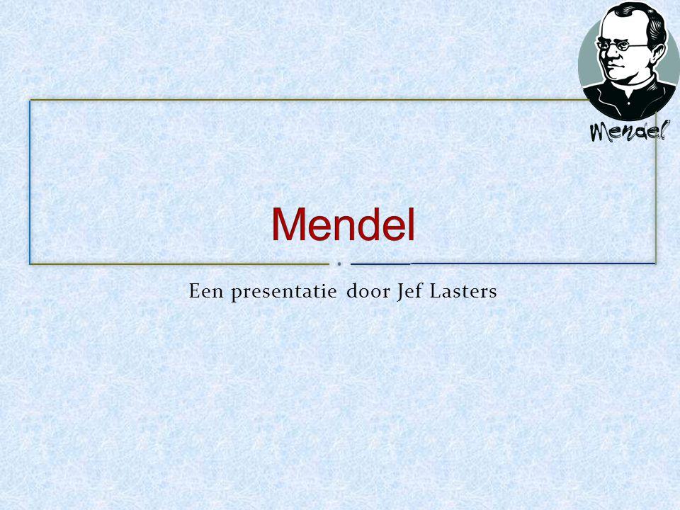 Een presentatie door Jef Lasters