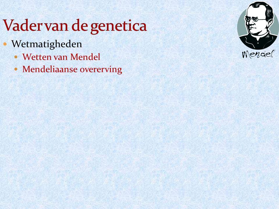 Wetmatigheden Wetten van Mendel Mendeliaanse overerving