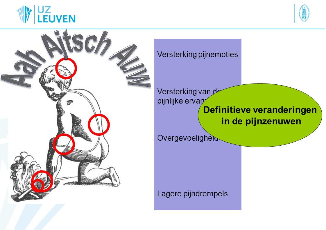 Versterking pijnemoties Versterking van de pijnlijke ervaring Overgevoeligheid Lagere pijndrempels Definitieve veranderingen in de pijnzenuwen