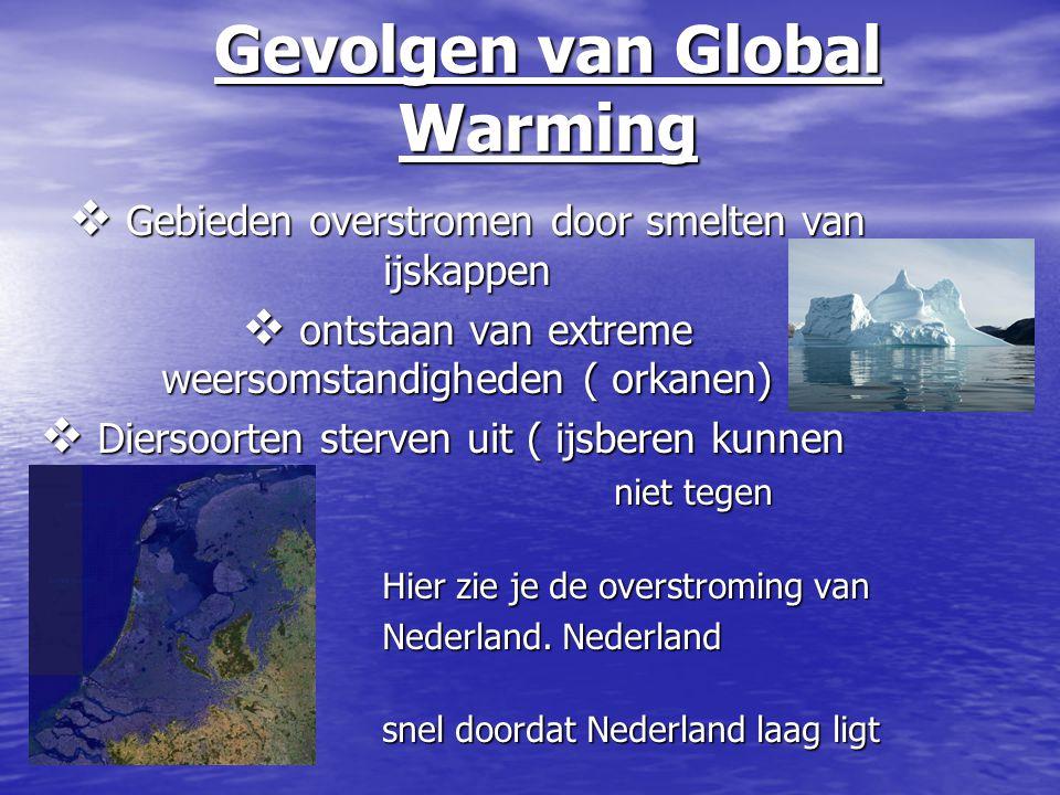 Gevolgen van Global Warming  Gebieden overstromen door smelten van ijskappen  ontstaan van extreme weersomstandigheden ( orkanen)  Diersoorten ster