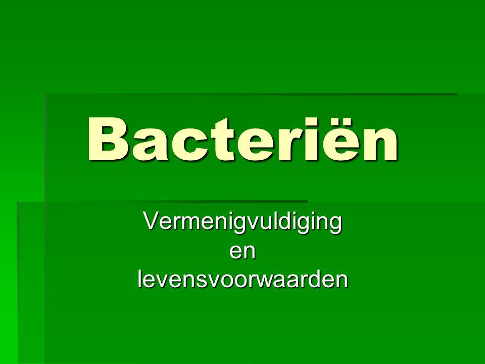 Bacteriën Vermenigvuldigingenlevensvoorwaarden