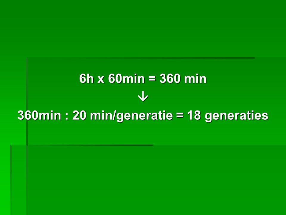 6h x 60min = 360 min  360min : 20 min/generatie = 18 generaties