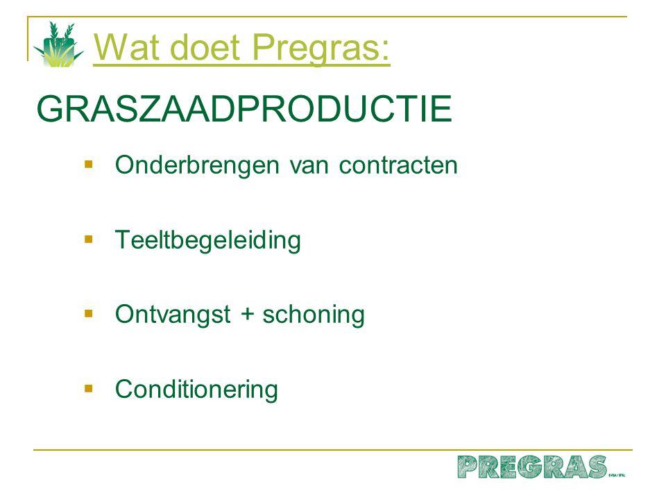 Wat doet Pregras:  Onderbrengen van contracten  Teeltbegeleiding  Ontvangst + schoning  Conditionering GRASZAADPRODUCTIE