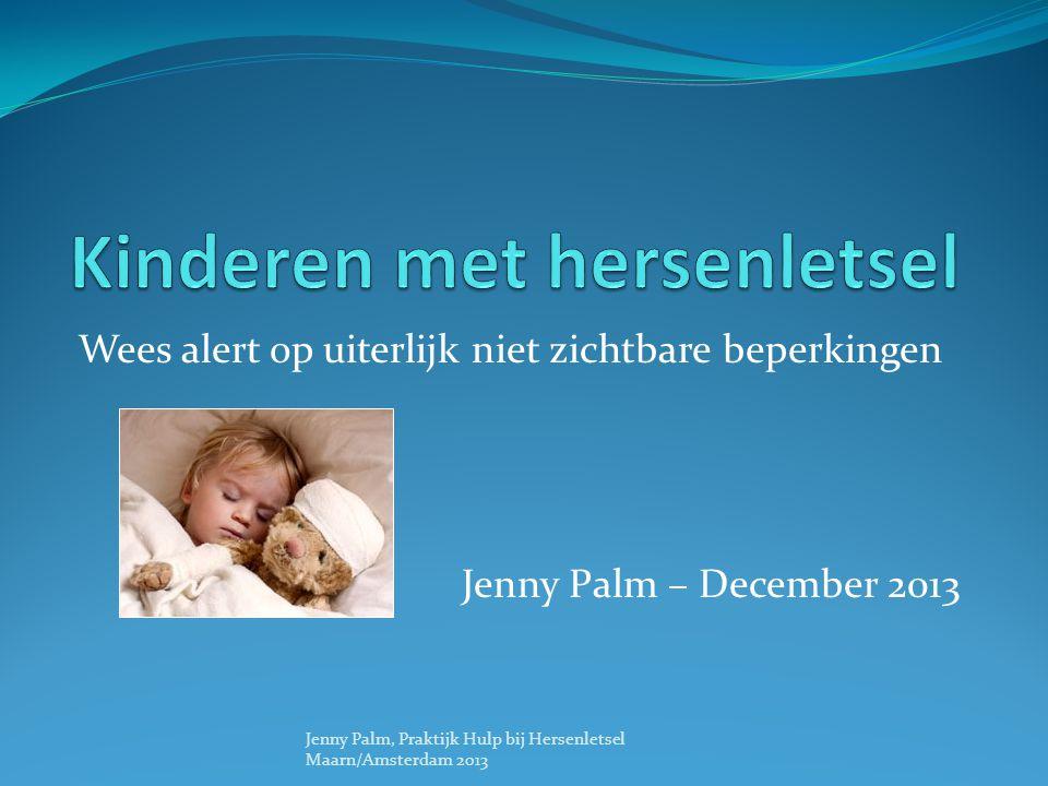 Wees alert op uiterlijk niet zichtbare beperkingen Jenny Palm – December 2013 Jenny Palm, Praktijk Hulp bij Hersenletsel Maarn/Amsterdam 2013