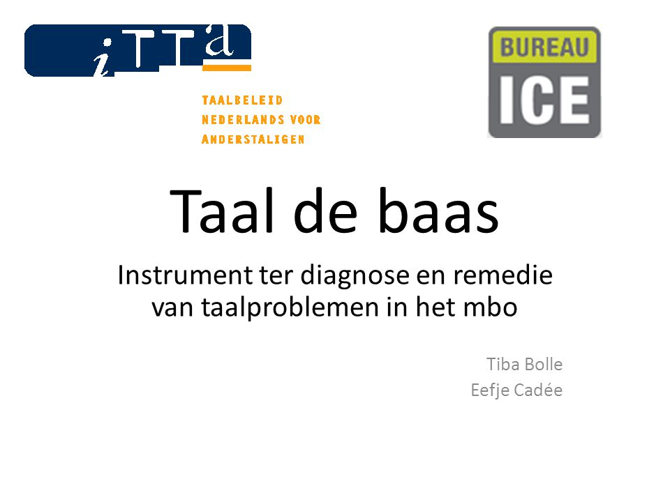 Taal de baas Instrument ter diagnose en remedie van taalproblemen in het mbo Tiba Bolle Eefje Cadée