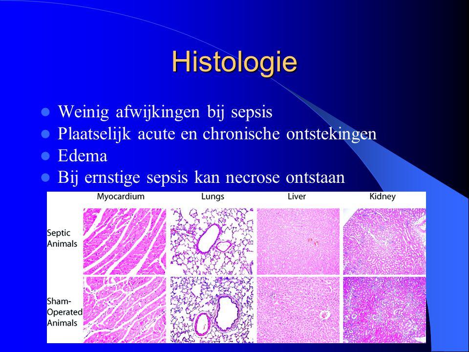 Histologie Weinig afwijkingen bij sepsis Plaatselijk acute en chronische ontstekingen Edema Bij ernstige sepsis kan necrose ontstaan