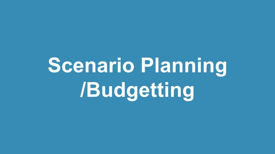 Scenario Planning /Budgetting