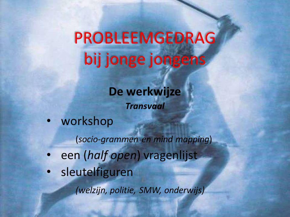 PROBLEEMGEDRAG bij jonge jongens De literatuur justitiele/BZK rapporten thesissen (psychologie, pedagogiek) psychopathologie …