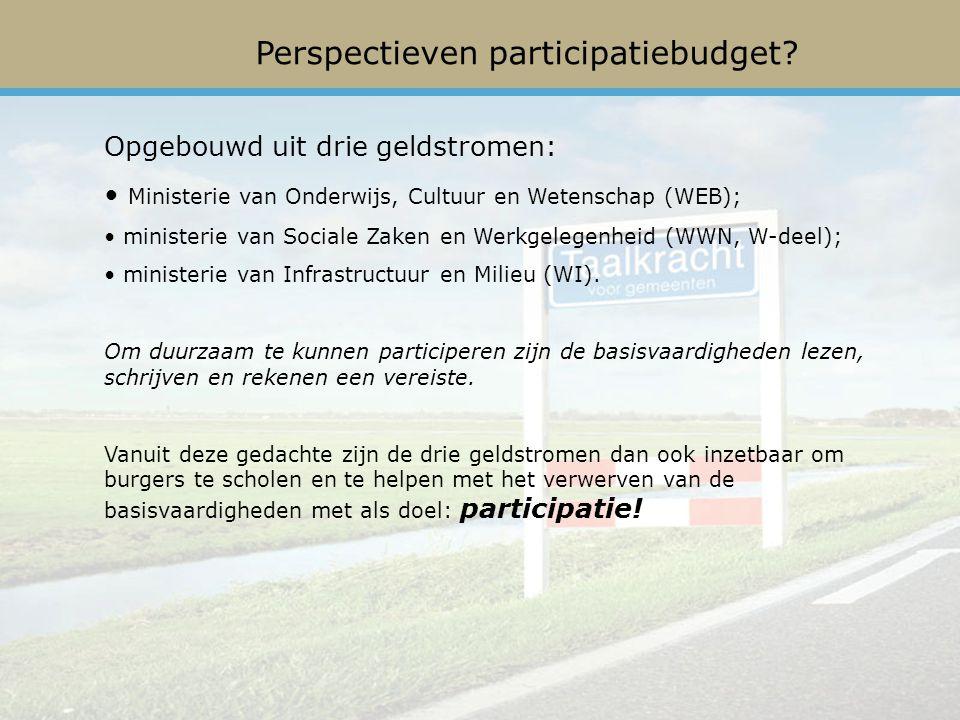 Perspectieven participatiebudget.