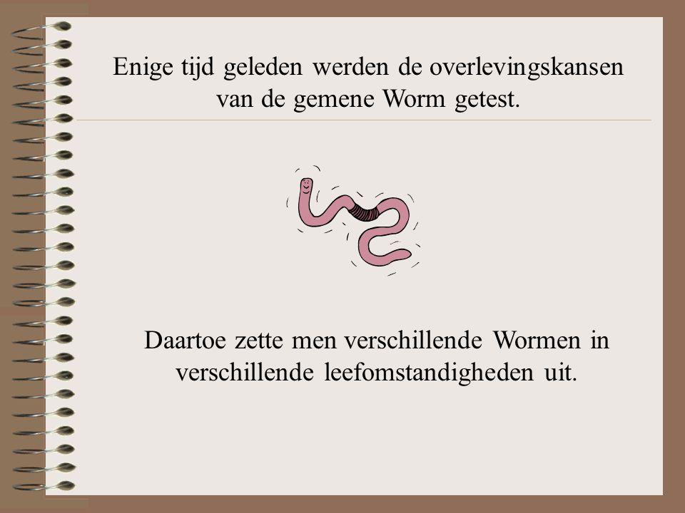 Levenswijsheden Deel 1 – De Worm