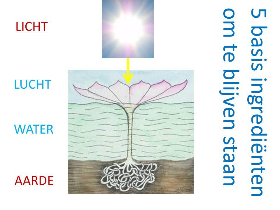 AARDE WATER LUCHT LICHT 5 basis ingrediënten om te blijven staan
