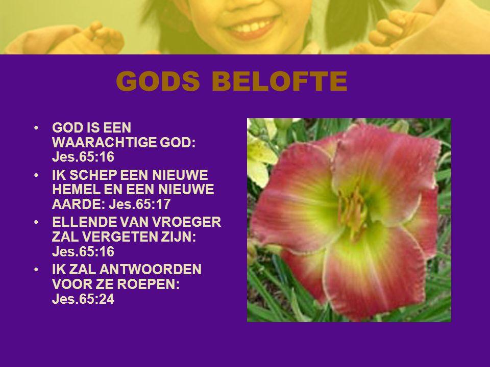 GODS BELOFTE GOD IS EEN WAARACHTIGE GOD: Jes.65:16 IK SCHEP EEN NIEUWE HEMEL EN EEN NIEUWE AARDE: Jes.65:17 ELLENDE VAN VROEGER ZAL VERGETEN ZIJN: Jes.65:16 IK ZAL ANTWOORDEN VOOR ZE ROEPEN: Jes.65:24