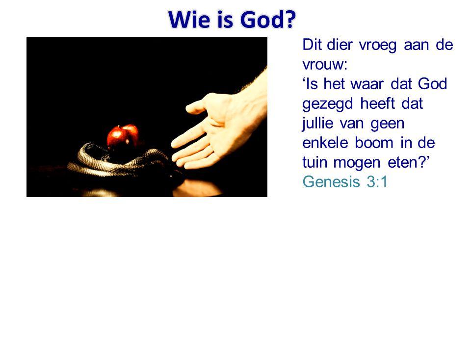 Dit dier vroeg aan de vrouw: 'Is het waar dat God gezegd heeft dat jullie van geen enkele boom in de tuin mogen eten?' Genesis 3:1