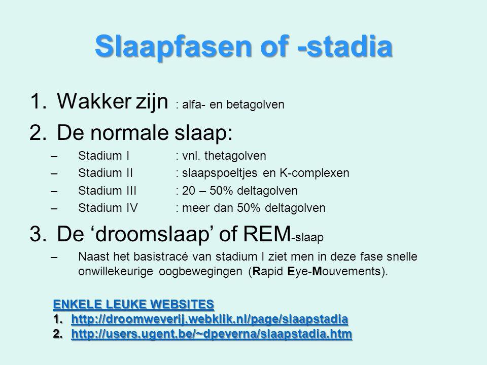 Slaapfasen of -stadia 1.Wakker zijn : alfa- en betagolven 2.De normale slaap: –Stadium I: vnl. thetagolven –Stadium II: slaapspoeltjes en K-complexen