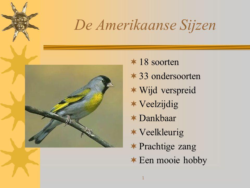 1 De Amerikaanse Sijzen  18 soorten  33 ondersoorten  Wijd verspreid  Veelzijdig  Dankbaar  Veelkleurig  Prachtige zang  Een mooie hobby