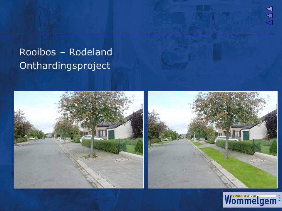 Rooibos – Rodeland Onthardingsproject